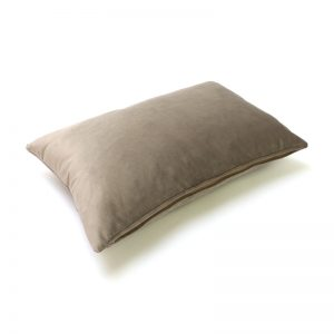 Mole Velvet Rectangular Cushion